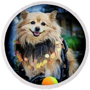 Halloween Dog Round Beach Towel