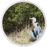 Round Beach Towel featuring the photograph Henry The Heron by Benanne Stiens
