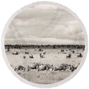 Herd Of Wildebeestes Round Beach Towel