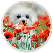 Hermes And Poppies Round Beach Towel