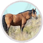 Honor Of The Steens Round Beach Towel