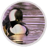 Hooded Merganser Round Beach Towel