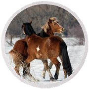 Round Beach Towel featuring the photograph Horseplay by Mike Dawson