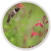 Hummingbird And Sage Round Beach Towel