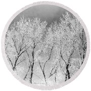 Ice Trees Round Beach Towel