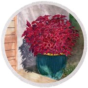 Round Beach Towel featuring the painting In The Morning by Melly Terpening