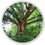 Round Beach Towel featuring the photograph Inwood Ginkgo  by Cole Thompson