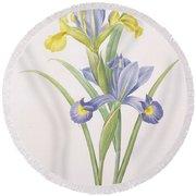 Iris Xiphium Round Beach Towel
