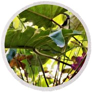 Round Beach Towel featuring the photograph Jungle Jive by Mindy Newman