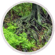 Round Beach Towel featuring the photograph Jungle Roots by Les Cunliffe
