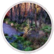 Round Beach Towel featuring the photograph Last Days Of Autumn by Jeremy Lavender Photography