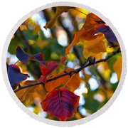 Leaves Of Autumn Round Beach Towel by Stephen Anderson