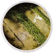 Light Footsteps In The Garden Round Beach Towel