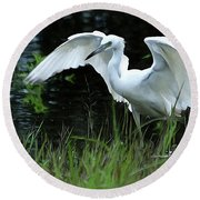 Little Blue Heron Hunting - Digitalart Round Beach Towel