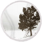Round Beach Towel featuring the photograph Lone Tree by Marilyn Hunt