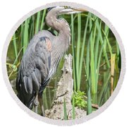 Lost Lagoon Heron Round Beach Towel by Ross G Strachan