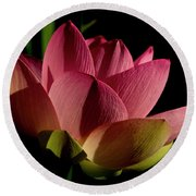 Round Beach Towel featuring the photograph Lotus Flower 2 by Buddy Scott