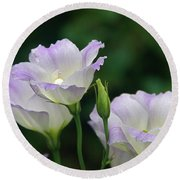 Round Beach Towel featuring the photograph Lovely Lisianthus by Byron Varvarigos