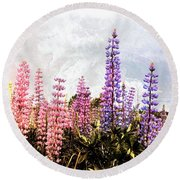 Lupins Round Beach Towel