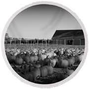 Make Way For Pumpkins Round Beach Towel
