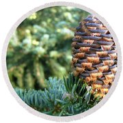 Round Beach Towel featuring the photograph Masterful Construction - Spruce Cone by Angie Rea