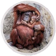 Mom And Baby Orangutan Round Beach Towel