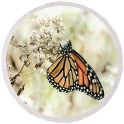 Monarch #1 Round Beach Towel