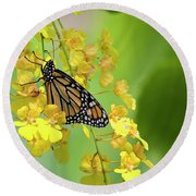 Monarch Butterfly On Yellow Orchids Round Beach Towel