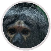 Monkey Face Round Beach Towel