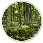 Round Beach Towel featuring the photograph Mossy Forest by Nikki McInnes