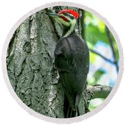 Mr. Pileated Woodpecker Round Beach Towel