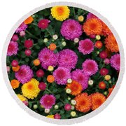 Multi Colored Mums Round Beach Towel by Living Color Photography Lorraine Lynch