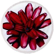 Neoregelia 'christmas Cheer' Round Beach Towel