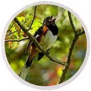 Towhee In Song Round Beach Towel
