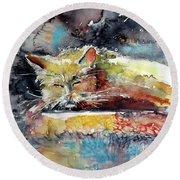 Old Cat Resting Round Beach Towel by Kovacs Anna Brigitta
