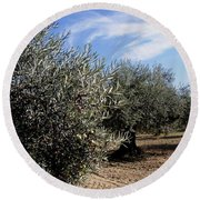Olive Trees Round Beach Towel by Judy Kirouac