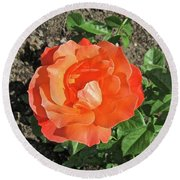 Round Beach Towel featuring the photograph Orange Rose by Stephanie Moore