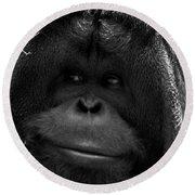 Orangutan Round Beach Towel by Martin Newman
