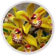Orchid 9 Round Beach Towel