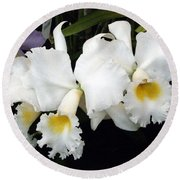 Orchids In White Round Beach Towel by Mindy Newman