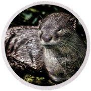 Otter Round Beach Towel