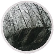 Round Beach Towel featuring the photograph Out Of The Rocks by Ellen Levinson
