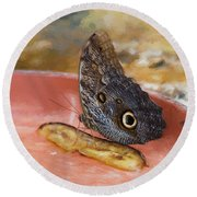 Round Beach Towel featuring the photograph Owl Butterfly 2 by Paul Gulliver