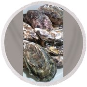 Oyster  Round Beach Towel