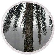 Palm, Koolau Trail, Oahu Round Beach Towel