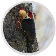 Pileated Whos There Round Beach Towel