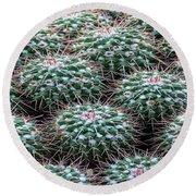 Pincushion Cactus Round Beach Towel