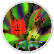 Plants And Flowers In Hawaii Round Beach Towel