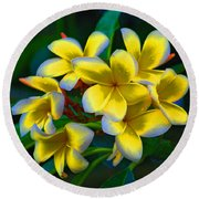 Round Beach Towel featuring the photograph 1- Plumeria Perfection by Joseph Keane
