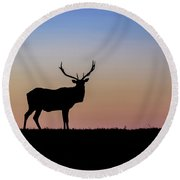 Point Reyes Elk Round Beach Towel